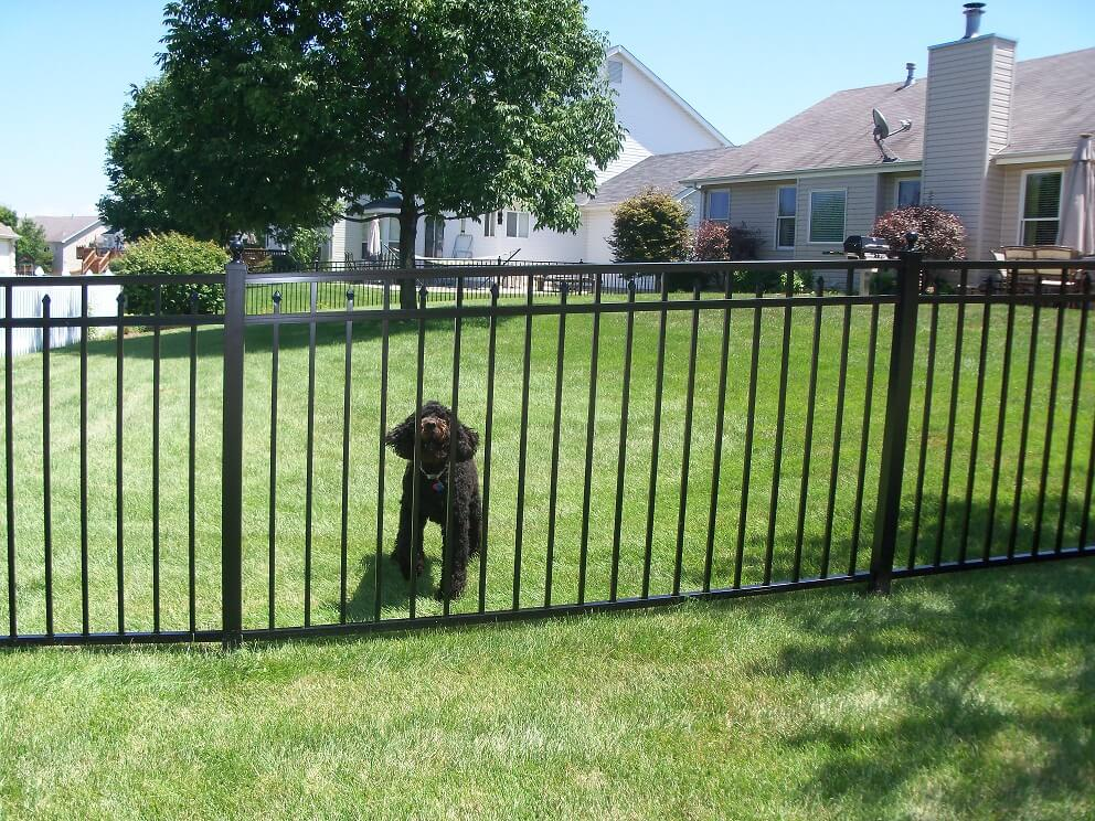 Commercial aluminum fencing from fence depot